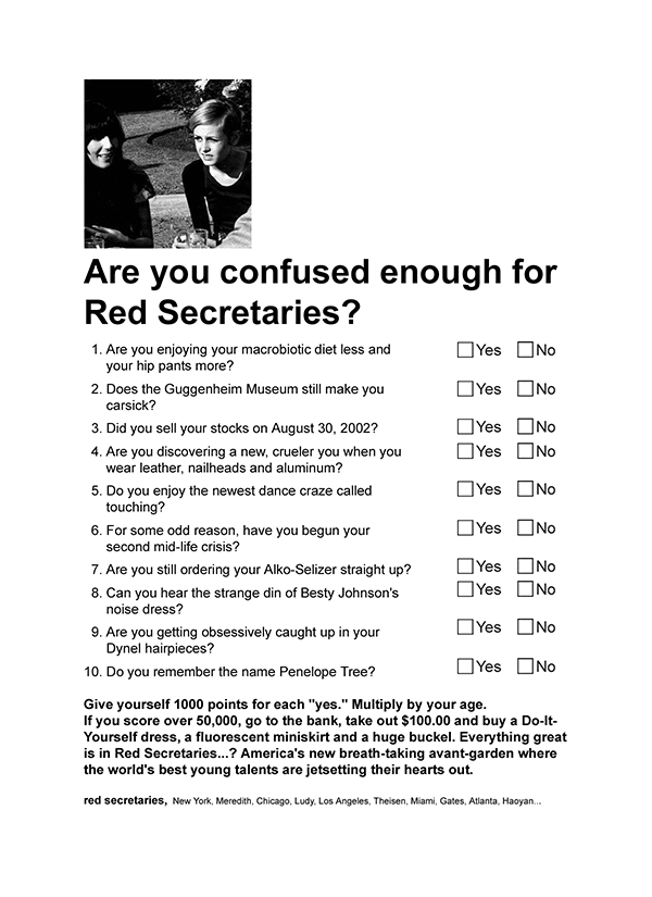 Red Secretaries Questionnaire Promo